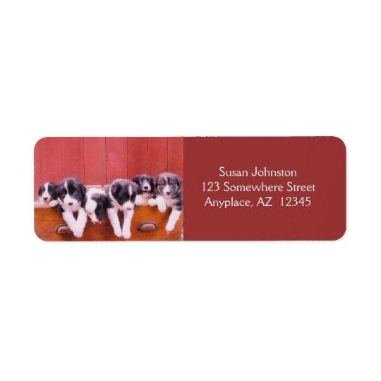 Cute Border Collie Puppies Return Address Label
