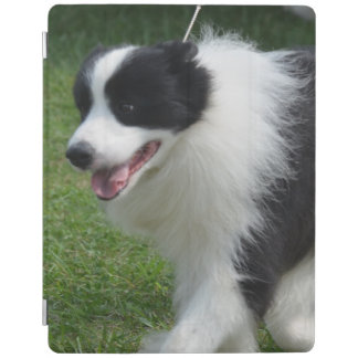 Cute Border Collie Puppy iPad Cover