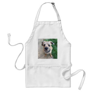 Cute border terrier aprons