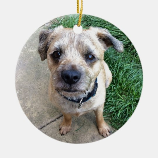 Cute border terrier christmas ornament