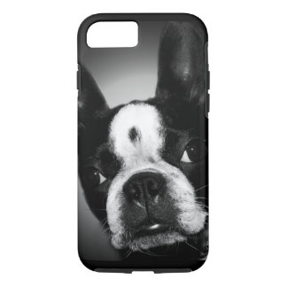 Cute Boston Terrier dog iPhone 8/7 Case