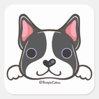 Cute Boston Terrier Sticker