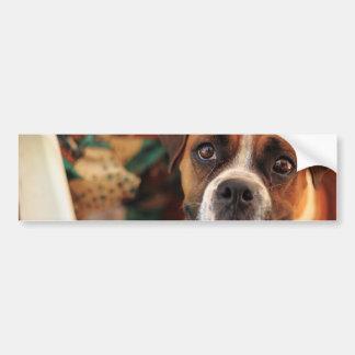Cute Boxer Bumper Sticker