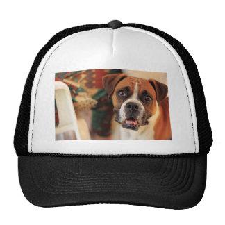 Cute Boxer Trucker Hat