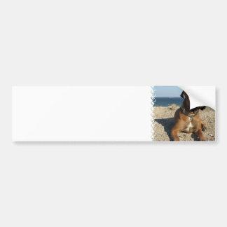 Cute Boxer Dog Bumper Sticker