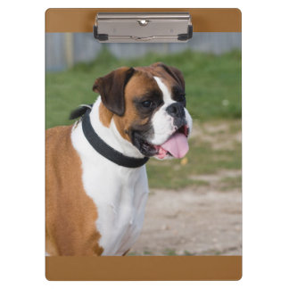 Cute Boxer / Dog Photo Clipboard