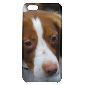 Cute Brittany Spaniel iPhone 5C Covers