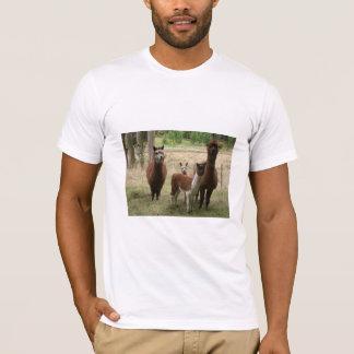 Cute Brown Alpacas In The Zoo T-Shirt