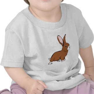 Cute Brown and White Bunny Rabbit Tshirts