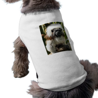 Cute brown and white monkey pet clothing