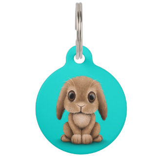 Cute Brown Baby Bunny Rabbit on Blue Pet Name Tags