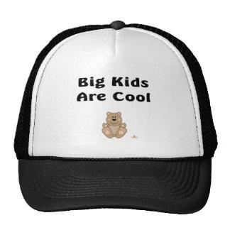 Cute Brown Bear Big Kids Are Cool Mesh Hat