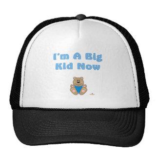 Cute Brown Bear Blue Bib I'm A Big Kid Now Hat