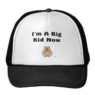 Cute Brown Bear I'm A Big Kid Now Hat