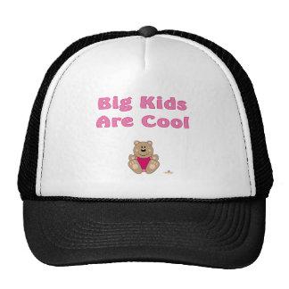 Cute Brown Bear Pink Bib Big Kids Are Cool Mesh Hats