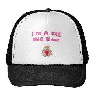 Cute Brown Bear Pink Bib I'm A Big Kid Now Mesh Hat