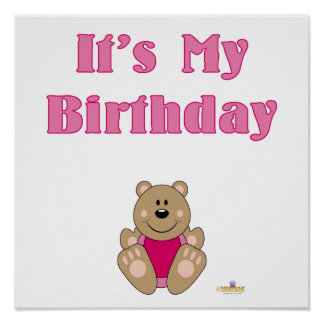 Cute Brown Bear Pink Bib It s My Birthday Print