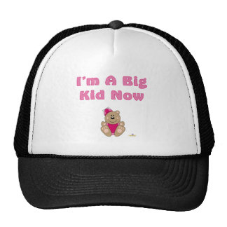 Cute Brown Bear Pink Silly Hat I'm A Big Kid Now