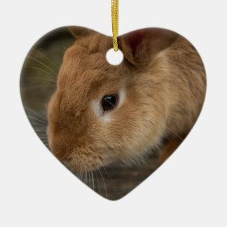 Cute brown bunny ceramic heart decoration