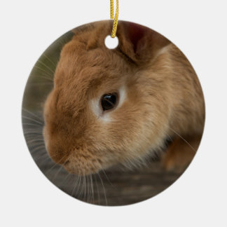 Cute brown bunny christmas ornament