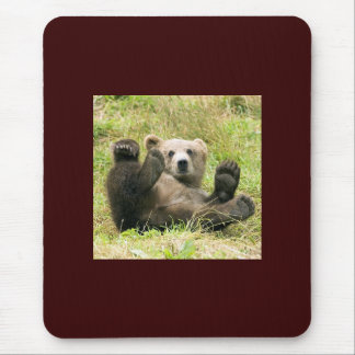 Cute brown grizzly bear cub beautiful photo, gift mouse pad