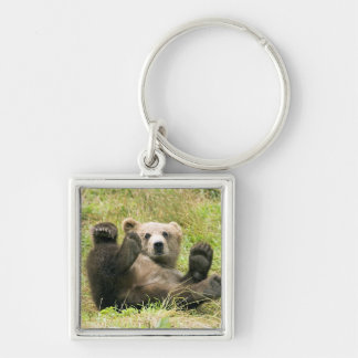 Cute brown grizzly bear cub photo, gift Silver-Colored square key ring