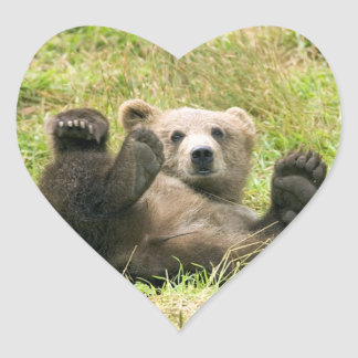 Cute brown grizzly bear cub photo, gift sticker