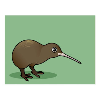 Cute Brown Kiwi from New Zealand Postcard