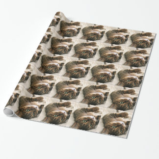 Cute Brown Spotted Bengal Cat Kitten Lying in Bed Wrapping Paper