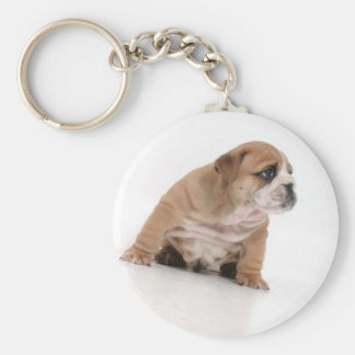 Cute bulldog puppy key ring