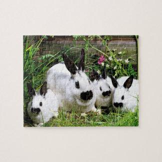 Cute Bunnies Puzzle