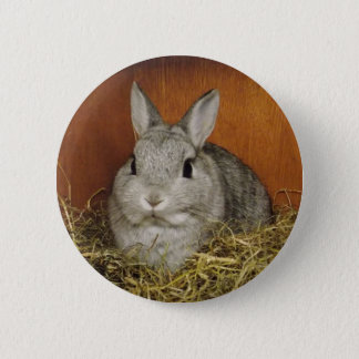 Cute Bunny Button Badge