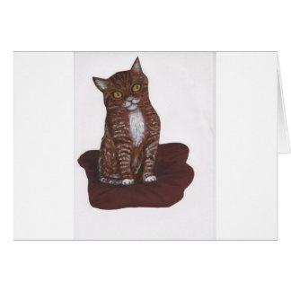 cute but hissy cat greeting card
