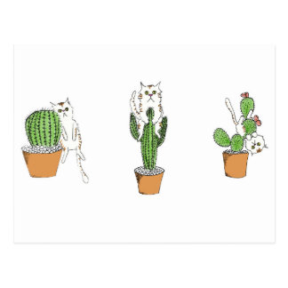 Cute Cactus Cats Postcard