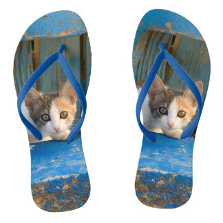 Cute Calico Cat Kitten Funny Curious Eyes Photo __ Flip Flops