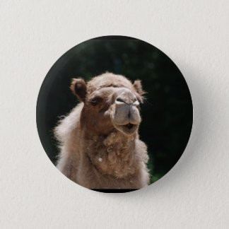 Cute Camel 6 Cm Round Badge