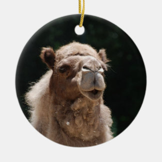 Cute Camel Christmas Ornament