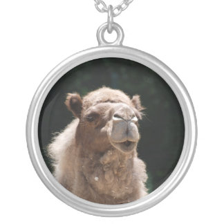 Cute Camel Silver Plated Necklace