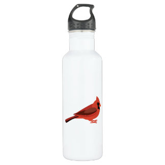 cute cardinal 710 ml water bottle