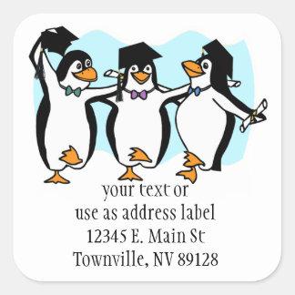 Cute Cartoon Graduating Penguins Square Stickers