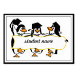 Cute Cartoon Graduating Penguins w/Banner Pack Of Chubby Business Cards