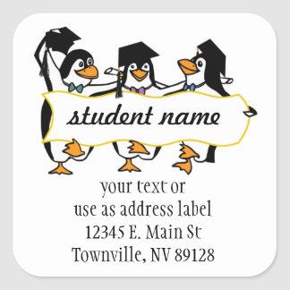 Cute Cartoon Graduating Penguins w/Banner Square Sticker