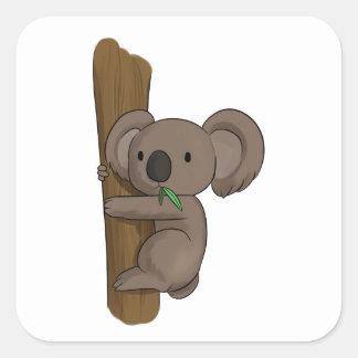 Cute Cartoon Koala Bear on Tree Eating Eucalyptus Square Sticker