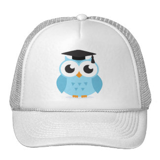 Cute cartoon owl graduate with mortarboard mesh hats