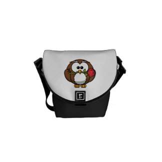 Cute Cartoon Owl With Rose Courier Bags