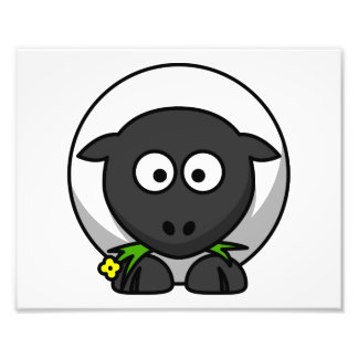 Cute Cartoon Sheep Art Photo
