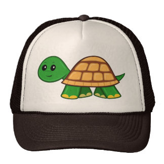 Cute Cartoon Turtle Hat