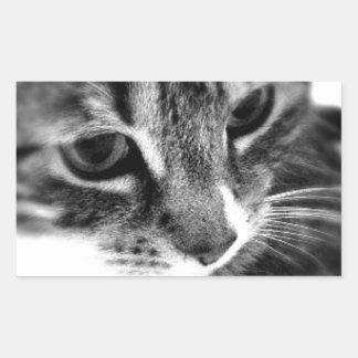 Cute Cat black and white designs Rectangular Sticker