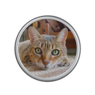 Cute Cat bluetooth speaker
