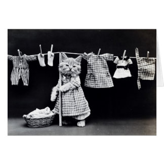 Cute Cat Doing Laundry in Clothes Vintage Print Greeting Card
